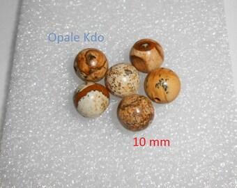 Set of 6 beads of Jasper 10 milimtres