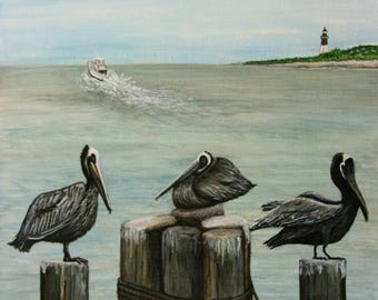 Pelicans at Tybee Island, Savannah Georgia, Birds, Lighthouse