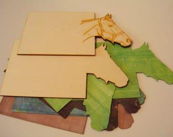 Horse 1370 Littles album cover