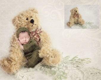 Bear 1, digital backdrop for Newbornphotographer