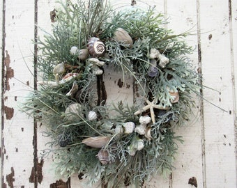 Beach Inspired Wreath with Grey/Green Dusty Miller, Green Sea Grass, Coral Grass, Starfish, and Seashells- Ready to Ship