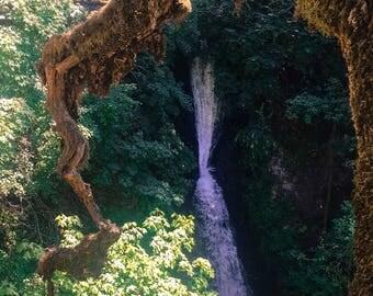 Waterfall Peekaboo Photo
