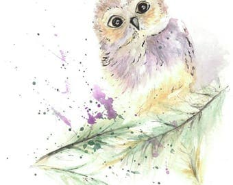 Watercolour print of cute little owl on a branch