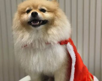 King Costume for Dogs