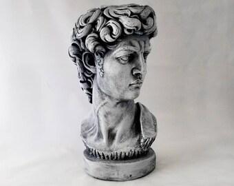 Michelangelo's David Bust - Plaster Statue - Grey or Bronze
