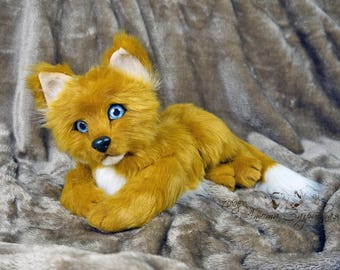 Oliver fox cub