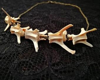 Rabbit Vertebrae Bronze Necklace