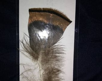 Turkey Feather Bookmark