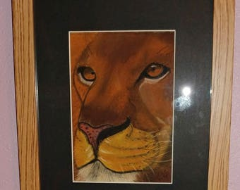 Framed & Matted Pastel African Lion