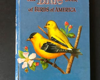 Vintage Book of Birds, The Blue Book of Birds of America, 1950's