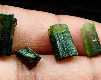 15.40 Unheated& Natural Green Cap Tourmaline Crystal Lot