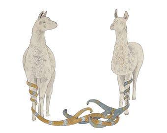 Entwined- Llamas print