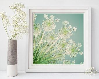 Queen Anne's Lace Flower Art Print, Flower Wall Art, Floral, Nature Photography, Flower Wall Decor, Aqua, Green