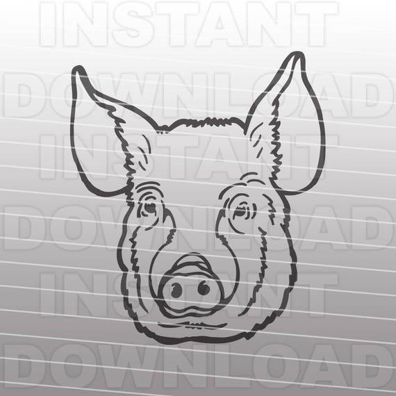 Pig Face Svg Filestock Show Pig Svg Filelivestock Svg Ffa