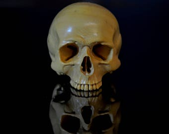 Collectible Hand Carved French Boxwood Skull Carving memento mori day of the dead dia de los muertos sculpture carving wood skeleton