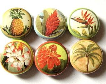Hawaiian Flower fridge Magnets Set of Six 1 inch Hawaii floral tropical palm tree pineapple paradise magnet hawaii stocking stuffer flair