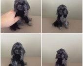 Custom dog Sculpture needle felted pet portrait