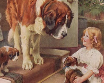 Vintage Print of St. Bernard Dogs - Here He Comes