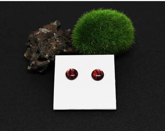 Christmas In July Sale - Abalone Gemstone . 8mm Round Dome . Sterling Silver Posts Studs Earrings . Banded Dark & Light Red . E16145