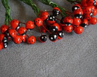 Ladybug picks  Set of 12  Garden Fun  Decorating Ladybugs Red Ladybugs
