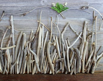 Artist Supply Driftwood Assortment of 60 Unique Pieces for Beach Wedding , Coastal Decor and Art AR60