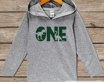 Boys Birthday Shirt - One Dinosaur Birthday Shirt - First Birthday Hoodie - One Dino Birthday Pullover - Green 1st Birthday Dinosaur Shirt