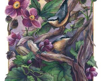 Fine Art Print of Original Watercolor Painting - The Autumn Anemone