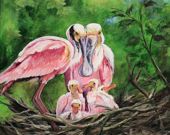 Roseate Spoonbill Family Nest