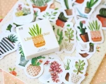 Cactus Succulents Lifelog Stickers cartoon shapes deco stickers set