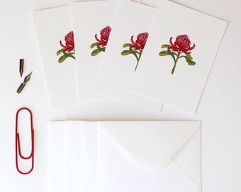 Waratah Illustrated 4 Pack - A6 Flora Postcards With Envelopes