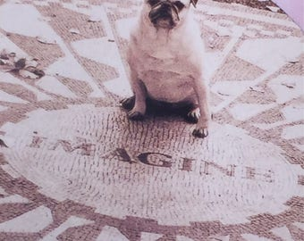Jumbo Kids Sticker Cute Pug Imagine Decal Handmade Animals Dogs Scrapbooking Crafts Circles