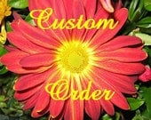 Custom Order - Bluebirds, Butterflies Birdhouse
