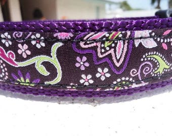 """Dog Collar,Purple Paisley 3/4"""" or 1"""" wide Quick Release buckle adjustable - see 1.5"""" listing - no martingale limited ribbon"""