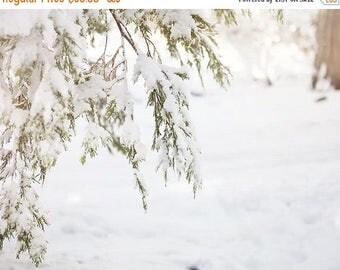 "SALE Winter Wall Art, Snow, Winter Woodland, Whimsical, Snow Wall Art, Winter Photography, Snow Photograph, Winter Wonderland ""Snow Trees"""