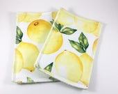 Reusable Sponges Unsponges Lemons