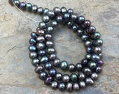 Peacock Pearls, Dark Gray Pearls, Near Round Pearl Beads, Iridescent Pearl Beads, 5mm, 14.5 inch strand