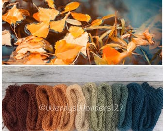Hand Dyed Yarn, Gradient Yarn, Fingering Weight Yarn, Autumn at the Pond