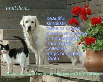 until then...rainbow bridge/tragic sudden death/ simplistic/ feline / canine/ choose an image/sentimental/unique empathy condolence