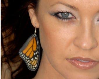 Real Monarch Butterfly Earrings - Butterfly Wings, Butterfly Jewelry, Natural, Monarch Wings, Recycled