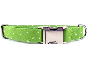 Polka Dots in Green Dog Collar