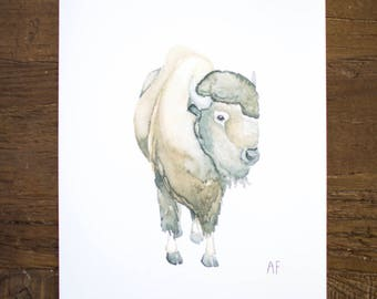 Buffalo Watercolor Print