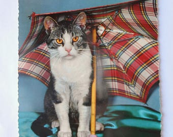 Vintage German Postcard of Cat with Umbrella