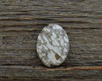 Alabama Petrified Wood Cabochon