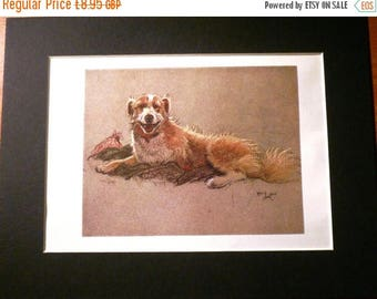 SALE TERRIER DOG Mix Signed mounted 1928 Cecil Aldin Happy mongrel Collie dog plate print Unique Christmas Thanksgiving gift Birthday gift p