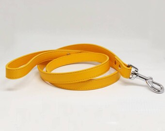 Citrus dog Leash, Pet accessory, Citrus Leather leash, Dog Lovers, Dog Leash, Wedding dog accessory, Custom leash