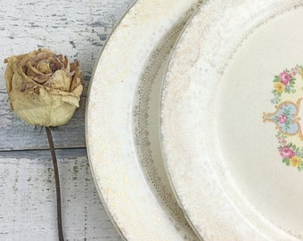 SUMMER SALE Set of Two Shabby Vintage Plates