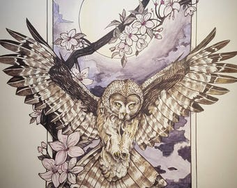 The All Seeing Owl print 11 by 16