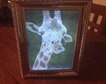 Giraffe LED Night Light Box