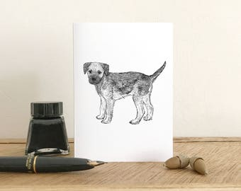 Border Terrier Greeting Card - Blank card - Fine Art Giclee card - Birthday card - Thank you card - Small note card