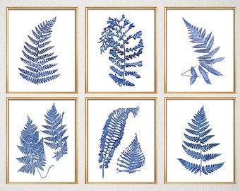 Cyanotype Fern Prints, Set of Six Fern Prints, Indigo Blue Botanical Prints, Blue Wild Flowers, Farm House Rustic Decor, Chinoiserie Prints